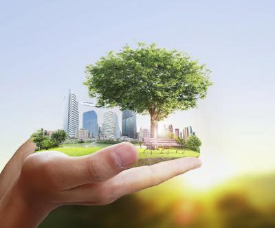 La réforme récente de la démocratie environnementale