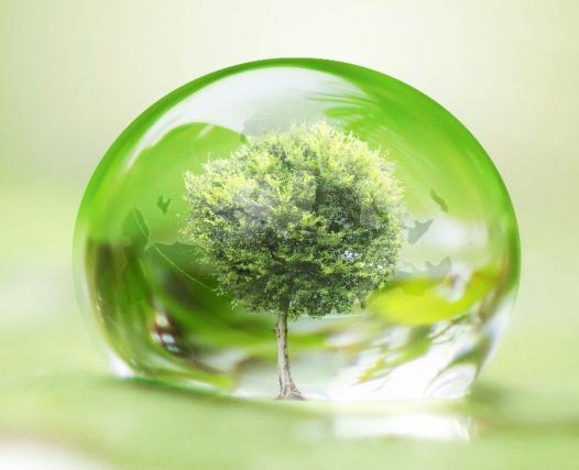 Avocat en droit de l'environnement à Versailles et Paris 9