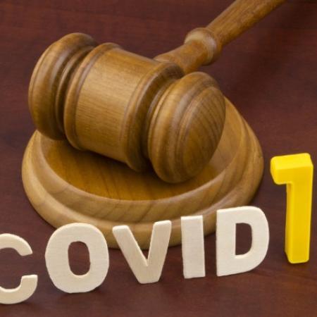 Covid 19 - Avis du Conseil d'Etat sur la loi prolongeant l'état d'urgence